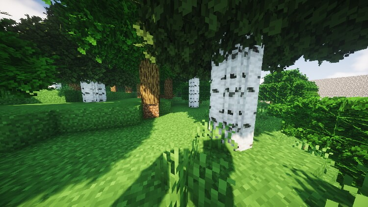 realistic round trees in minecraft