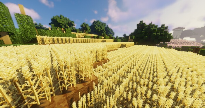 Soartex Fanver Resource Pack Download
