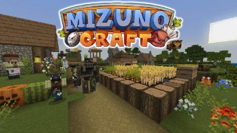 Mizuno Craft Texture Pack
