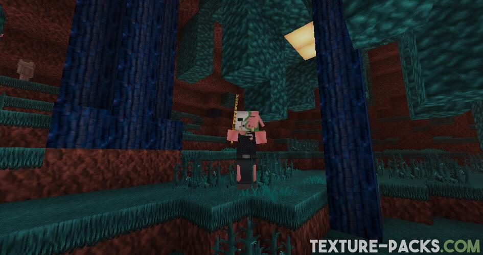 Soartex Fanver in Nether Screenshot