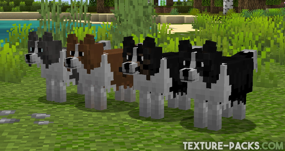 Better Dogs Resource Pack